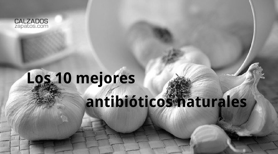 Top 10 Natural Antibiotics